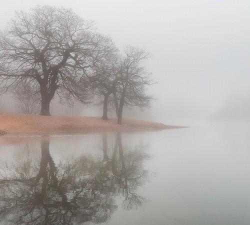 wondrous_river_in_fog