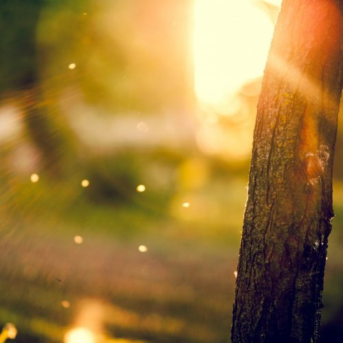 Break of Sun by Jessica Kristie
